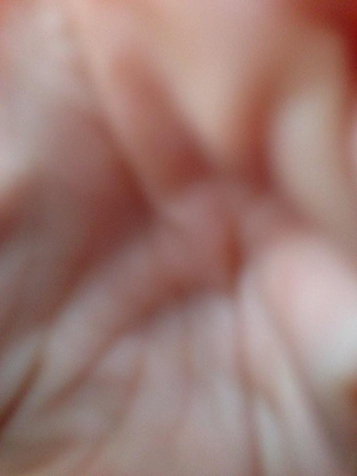20130115-062223.jpg